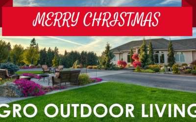 Give the Gift of Landscaping for Christmas This Holiday