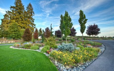 Increase Curb Appeal With Flowering Shrubs and Bushes